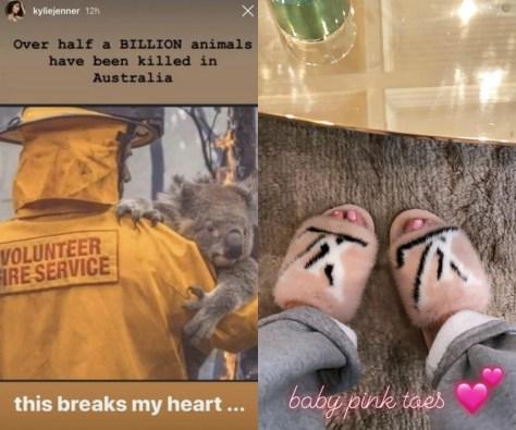 kylie jenner wildfire instagram story mink