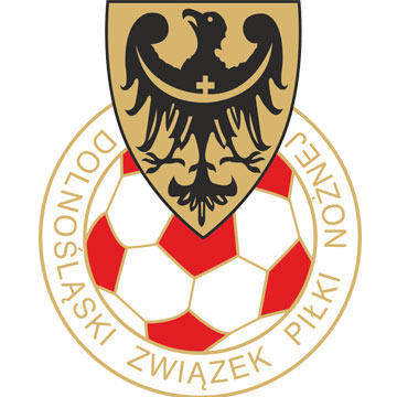 Lower Silesian Football Association