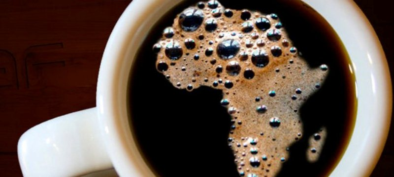 origins-coffee.ct_.4