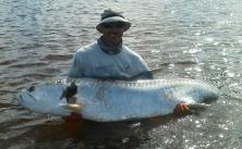 Kris's big St. Joe Bay Tarpon