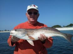 Bull Redfish Panama City Beach 4
