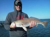 st joe bay redfish