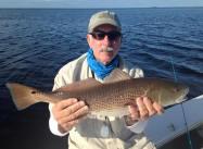 Redfish St Joe Bay 2