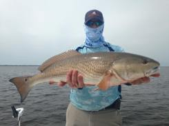 John's Port St Joe Redfish 2
