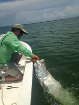 Tarpon Indian Pass Fishing Charters Guide