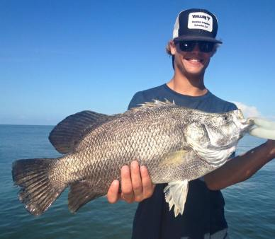 Indian Pass Triple Tail Fishing Charters Guide
