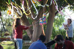 41 The Piñata