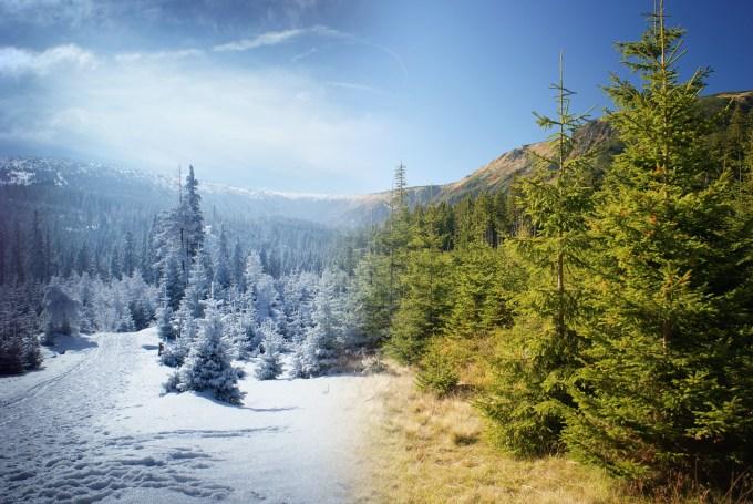 Winter / Summer Mountains