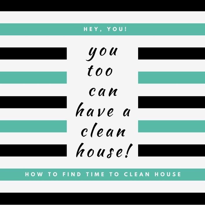You too can have a clean house!