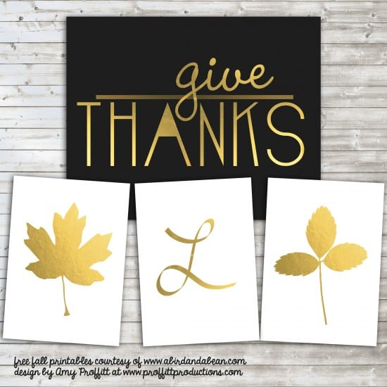 give_thanks-550x550