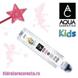 https://hidratarecorecta.ro/