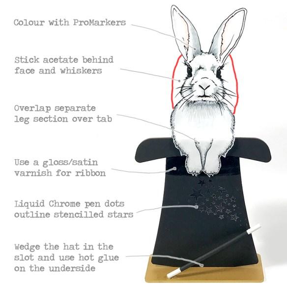 rabbitinstruct