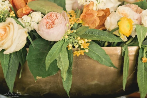 Alante Photography | Perfectly Posh Events | Butter & Bloom