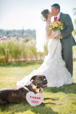 Clane Gessel Photography | Perfectly Posh Events