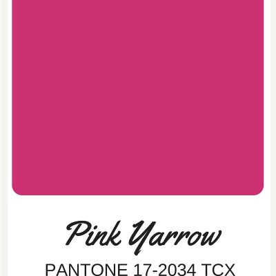 A Color Palette Series   Fifty Shades of Pink