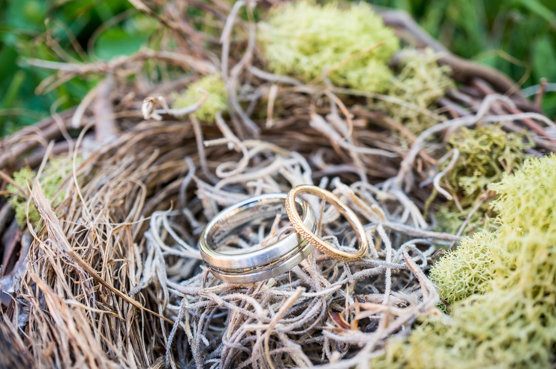 Wedding rings nestled in bird nest for photo | Meadowbrook Farm Wedding, Snoqualmie, WA | Perfectly Posh Events, Seattle Wedding Planner | Sasha Reiko Photography | Jesse + Wes Wedding // © Sasha Reiko Photography
