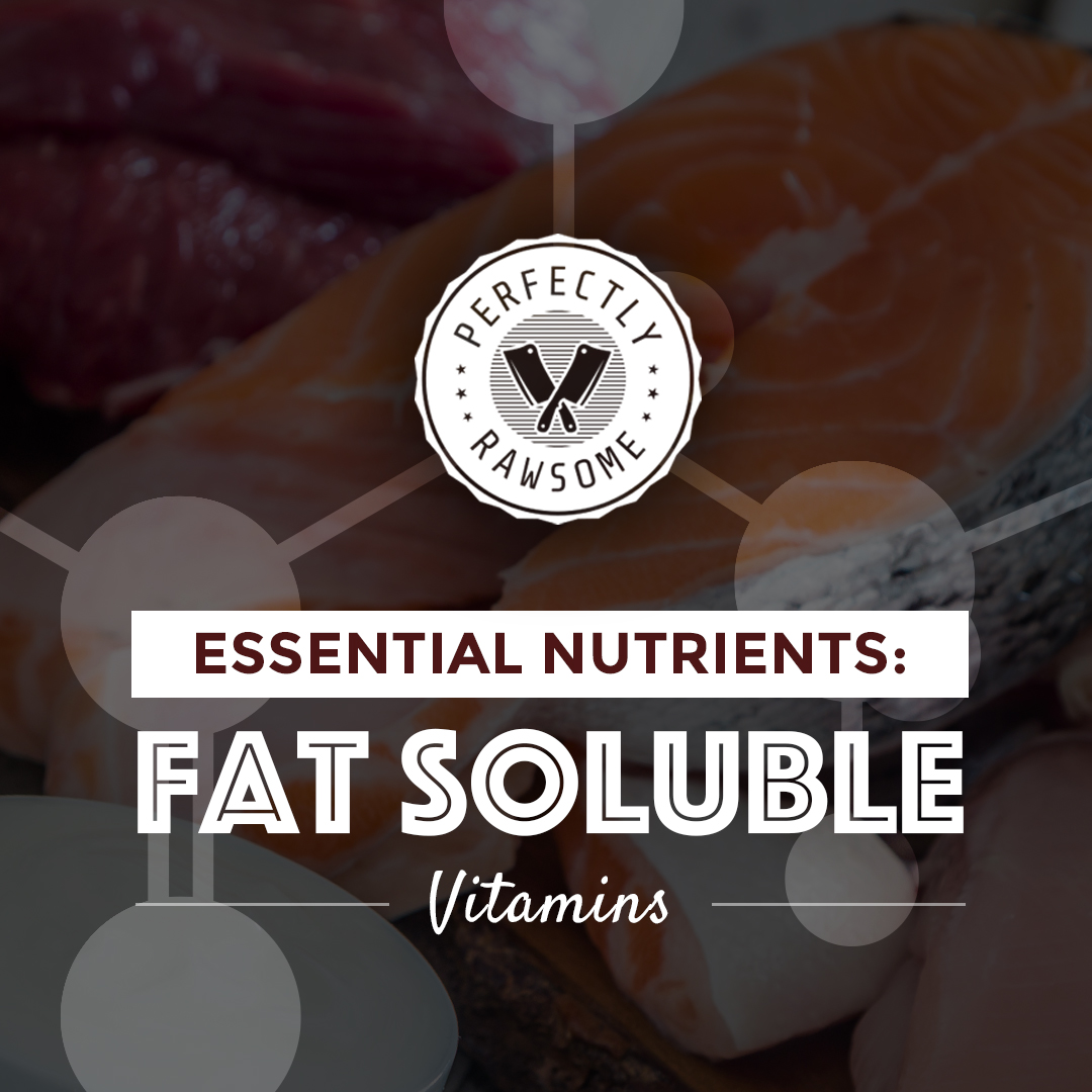 Essential Nutrients Fat Soluble Vitamins Guidance Blog