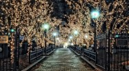 christmas-lights-wallpaper-tumblr-tumblr-lu288ijt6m1qevxw7o1-500