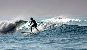 spanish language schools in costa rica,our spanish school and surf camp,surf camp costa rica