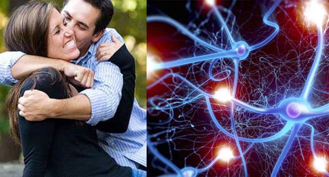 Ocitocina, o hormônio do amor