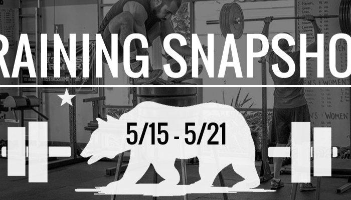 training_snapshot_5_15_17