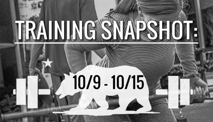 training_snapshot_10_9_17