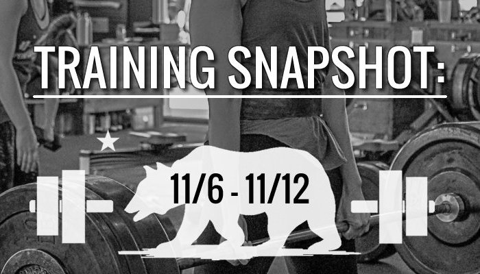 training_snapshot_11_6_17