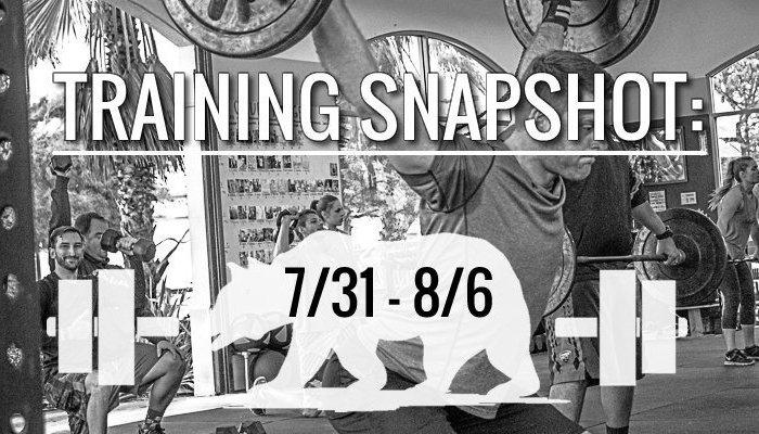 training_snapshot_7_31_17