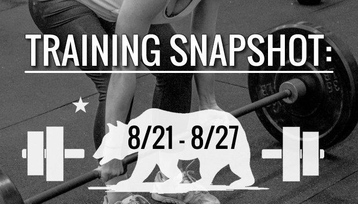 training_snapshot_8_21_17