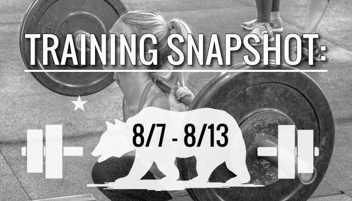 training_snapshot_8_7_17