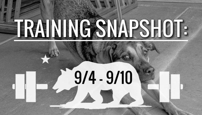 training_snapshot_9_4_17