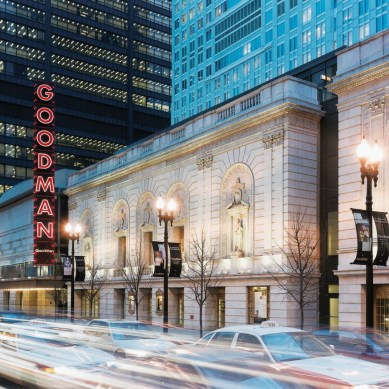 Goodman Announces New Stages Casting