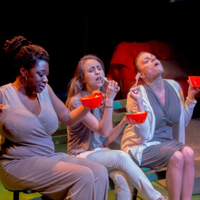 Review: WOMEN LAUGHING ALONE WITH SALAD at Theater Wit
