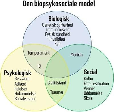 Den biopsykosociale model