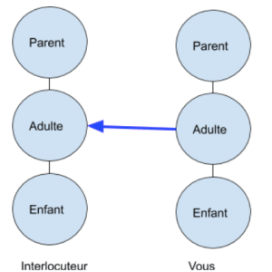 Transaction adulte adulte | Performance et coaching