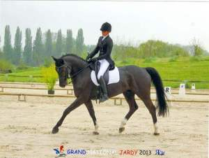 Julie Lecuyer - Haras d'Ysieux - Grand National Jardy 2013