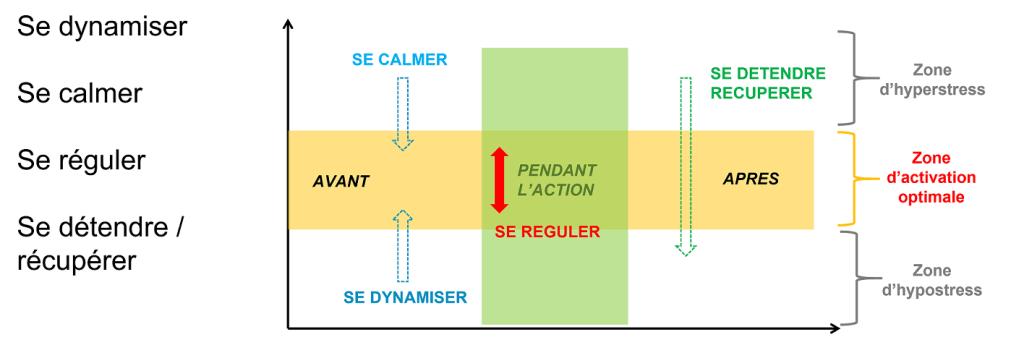 zone optimale d activation TOP | Performance et coaching