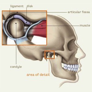 TMJ Physical Therapy | Performance Physical Therapy | Maine