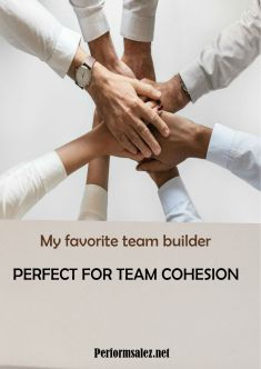 Team Cohesion for Sales Strategic Coaching Skills
