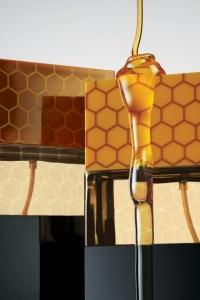 Naked Honey, Africanimal