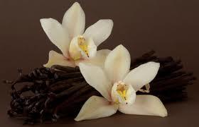 le labo vanille 44 - vanilla perfume
