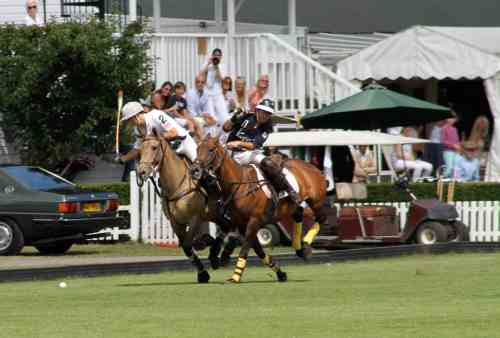Accord Oud Byredo Polo_at_Ham Wikipedia