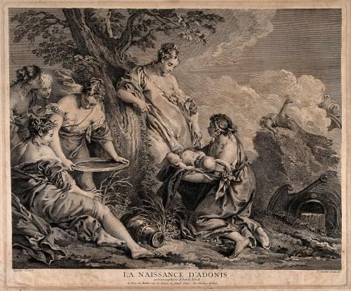 V0014974 Nymphs holding the new born Adonis next to a myrrh tree repr
