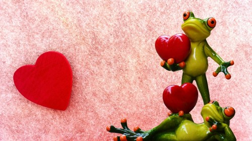 Froggy Love Valentine's Day 2017