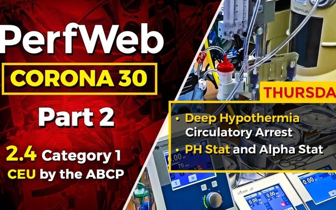 Corona 30 Part 2 Day 4 – Deep Hypothermia Circulatory Arrest and cardiopulmonary bypass