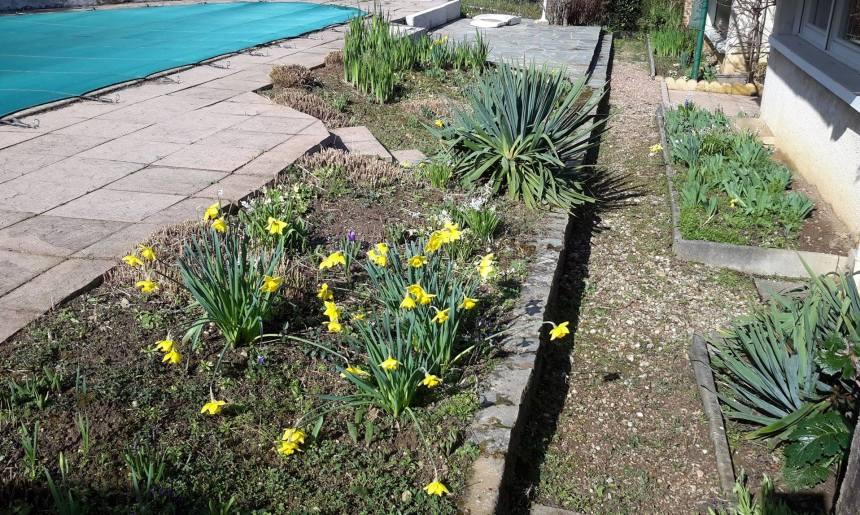 Rénovation et réagencement de piscine et terrasse