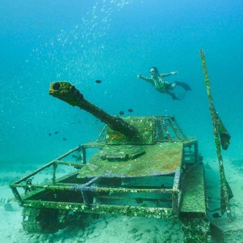 Selain berbagai macam ikan, menyelam di Pulau Sabang juga bisa melihat ini! via @meryrogan
