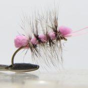 Pinkki Iso Puputus Pintaperho