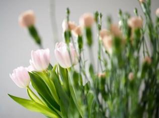 Kaikki illallisvieraat toi kukkia!