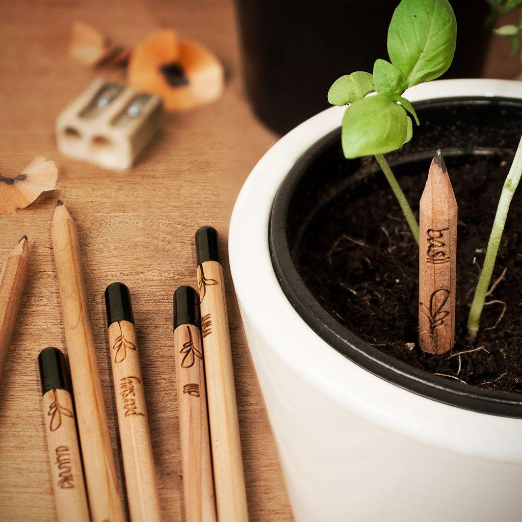 perierga.gr - Οικολογικά μολύβια φυτεύονται και μετατρέπονται σε λαχανικά!